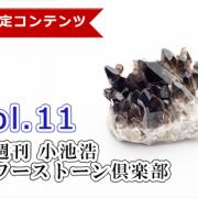 【隔週刊】小池浩 パワーストーン倶楽部  Vol.11【2021年8月1日号】